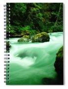 The Dosewallups River  Spiral Notebook