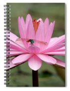 The Dragonfly And The Pink Water Lily Spiral Notebook