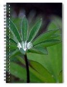 The Drop Spiral Notebook