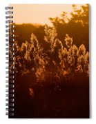 The Dunes- Fire Island Spiral Notebook