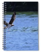 The Environmentalist Osprey Spiral Notebook