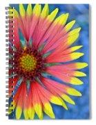The Extrovert Spiral Notebook