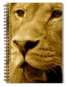 The Face Of God In Sepia Tones Spiral Notebook