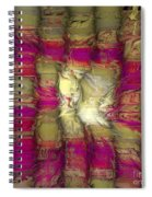 The Face Within Spiral Notebook