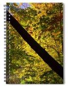 The Fall Split Spiral Notebook
