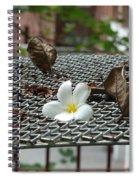 The Fallen Flower Spiral Notebook