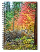 The Fallen Spiral Notebook