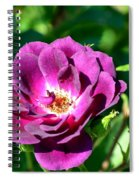 The Fallen Petal Spiral Notebook