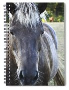 The Farmers Horse Spiral Notebook
