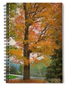 The Fay Tree Spiral Notebook