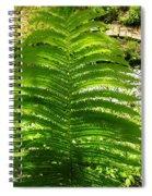 The Fern Spiral Notebook