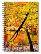 The Final Bough Spiral Notebook