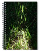 The Flames Of Green Spiral Notebook