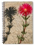 The Flower And Its Shadow Spiral Notebook