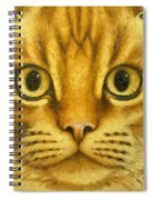 The French Orange Cat Spiral Notebook