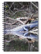The Gator That Lives Under The Bridge Spiral Notebook