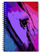 the Glance Spiral Notebook