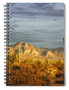 The Golden Glow II Spiral Notebook