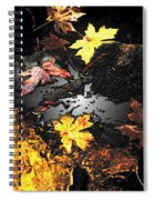 The Golden Leaves Spiral Notebook