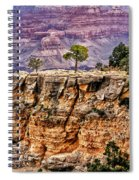 The Grand Canyon Iv Spiral Notebook