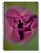 The Grand Opening Spiral Notebook