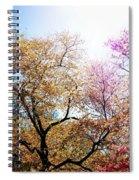 The Grandest Of Dreams - Cherry Blossoms - Brooklyn Botanic Garden Spiral Notebook