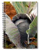 The Great Cabbage Spiral Notebook