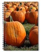 The Great Pumpkin Patch Spiral Notebook