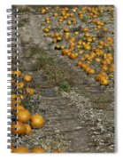 The Great Pumpkin Patch Trail Spiral Notebook