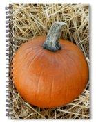 The Great Pumpkin Spiral Notebook