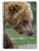 The Grizzly In Spring Spiral Notebook