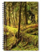 The Hall Of Mosses Spiral Notebook