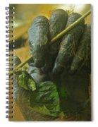 The Hands Spiral Notebook