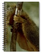 The Hang On Tail Spiral Notebook