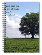The Harvest Spiral Notebook