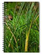 The Harvester Spiral Notebook