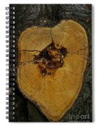 The Heart Of A Tree Spiral Notebook