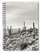 The High Desert  Spiral Notebook