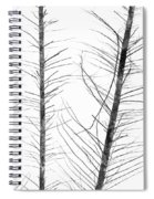The Hirsute Trees Spiral Notebook