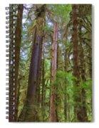 The Hoh Rain Forest Spiral Notebook