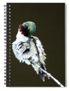 The Hummer Image Spiral Notebook