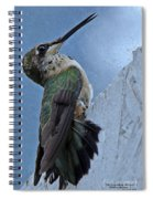 The Invisible Barrier 2 Spiral Notebook