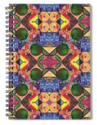 The Joy Of Design Series Arrangement Twenty Times Over Spiral Notebook