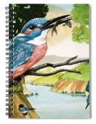 The Kingfisher Spiral Notebook