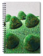 The Land Of Milk And Money Spiral Notebook