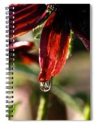 The Last Drop Spiral Notebook