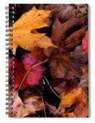The Leaves Spiral Notebook