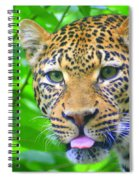 The Leopard's Tongue Spiral Notebook