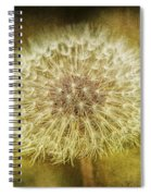 The Lion's Tooth Spiral Notebook