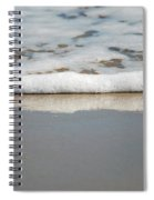 The Lone Sandpiper Spiral Notebook